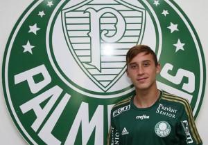 Arancibia_Palmeiras