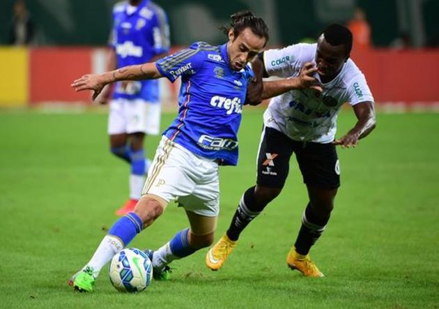 Valdivia_Palmeiras_ASA