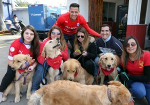 Alexis_perros_ANFP_Chile_1