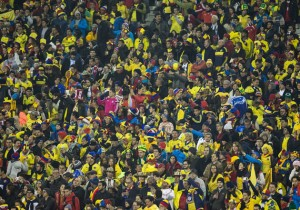 Hinchas_Colombia_PS_2015